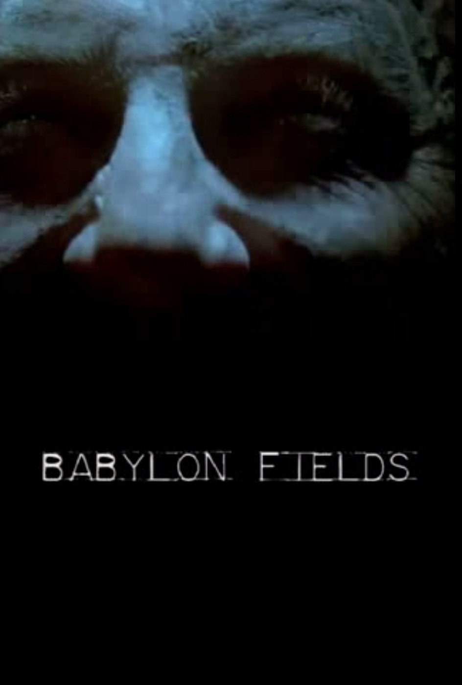 Babylon Fields